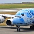 Photos: ANA  A380