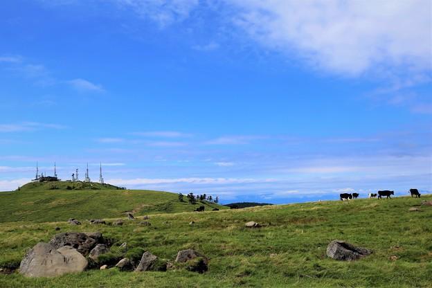 Photos: 天空の牧場