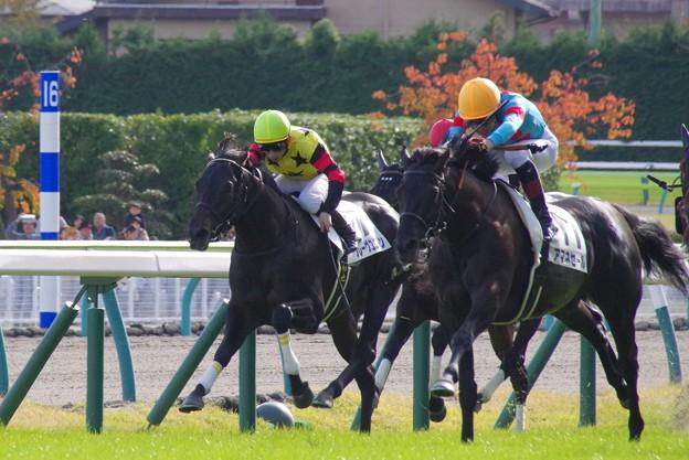 福島20191103_50
