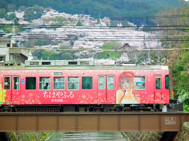 桜の三井寺