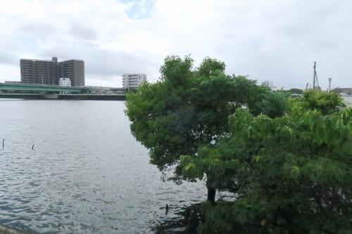淡之須神社骨董市(2018年7月)中川