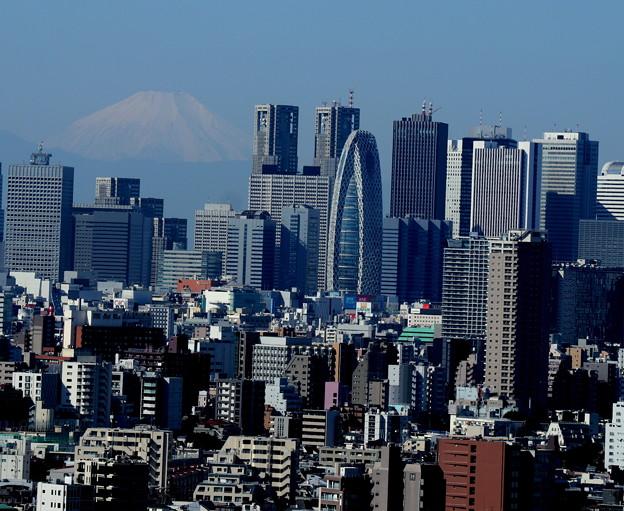 都庁の裏には富士山が