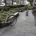 写真: 自転車のある風景1
