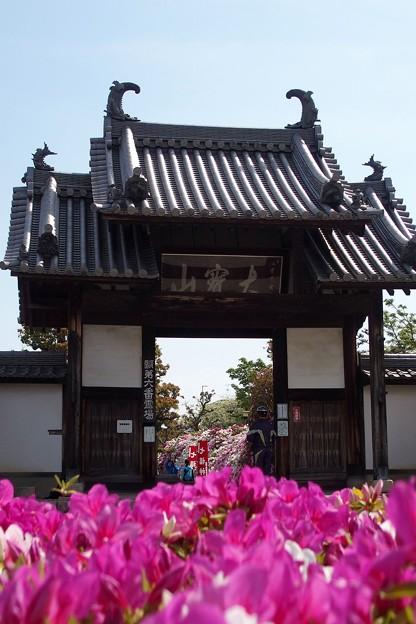 法雲禅寺山門
