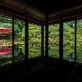 Photos: 旧竹林院