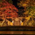 Photos: 金剛峯寺