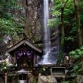 Photos: 桃尾の滝