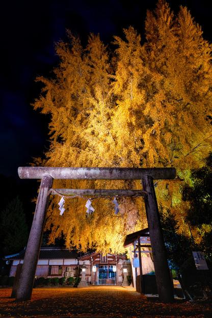 丹生酒殿神社
