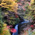 Photos: 高野大滝