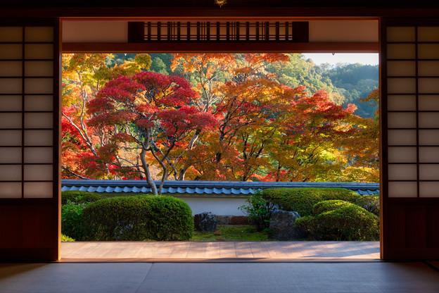 Photos: 海住山寺
