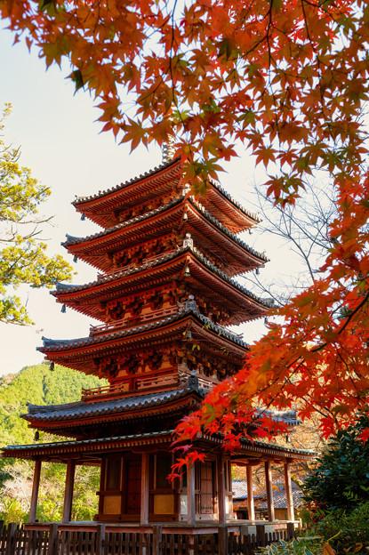 Photos: 五重塔