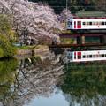 Photos: 和歌山電鐵