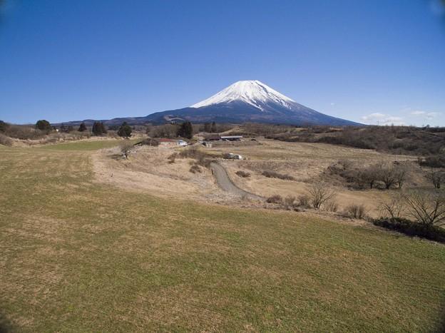 Photos: フジヤマ