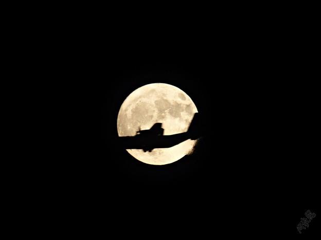 Photos: 満月 通過しま~す