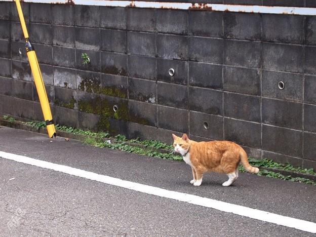 Photos: なに!
