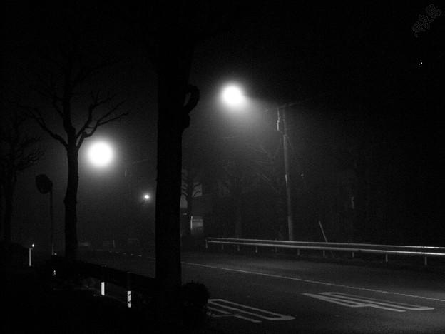 Photos: Foggy