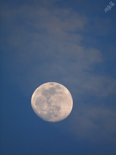 Photos: 寒空の月