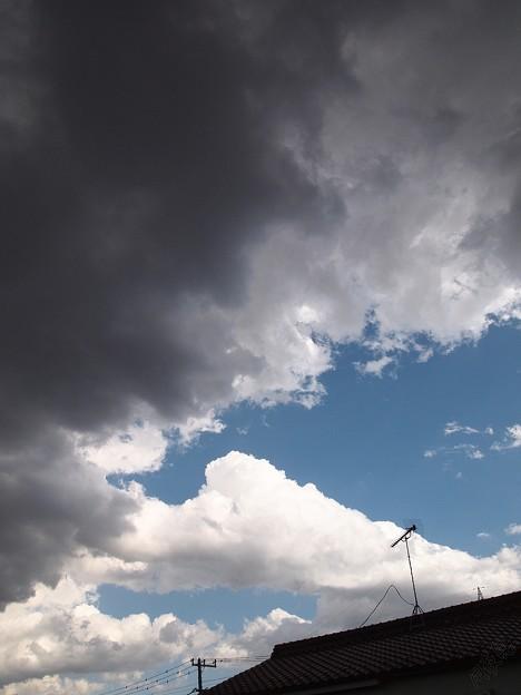 Photos: おぉ雨?