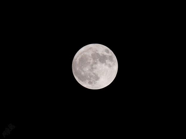 ハロウィン満月