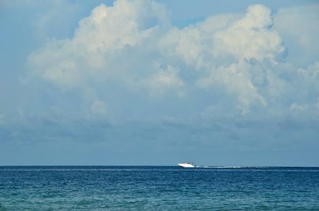 A White Boat 7-8-17