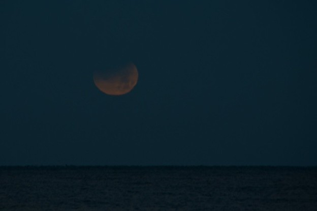 写真: Super Blue Blood Moon Setting into the Gulf 1-31-18