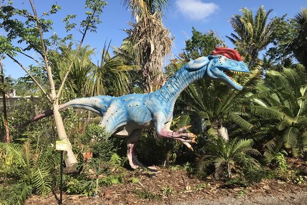 Dilophosaurus 2-25-18