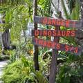 写真: Danger Dinosaurs 2-25-18