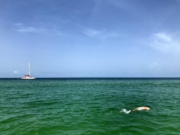 写真: Snorkeling 6-16-18