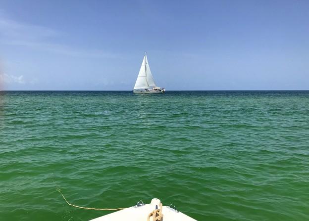写真: A Sailboat 6-16-18