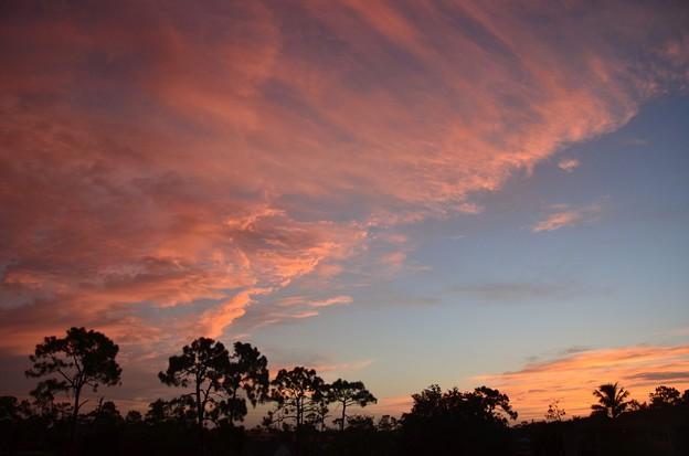 写真: Sunrise 8-2-18