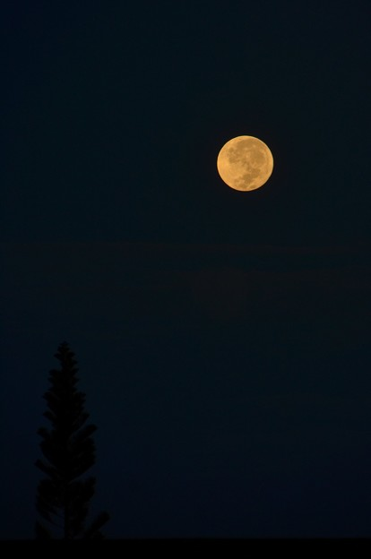 Photos: Harvest Moon in the Morning 9-25-18
