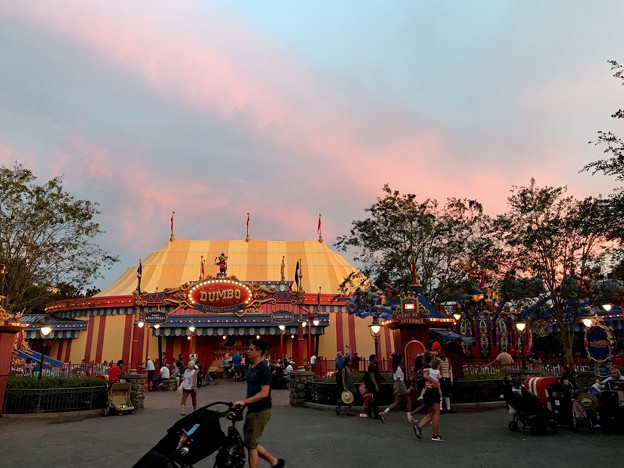 Dumbo 8-22-18