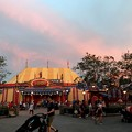 Photos: Dumbo 8-22-18