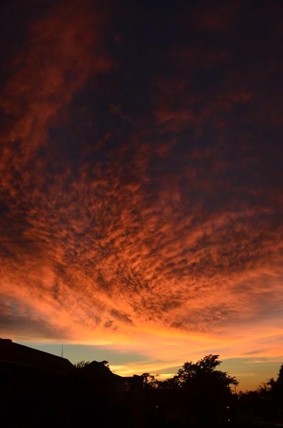 Sunset II 9-14-18