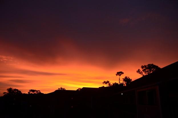 写真: Red Morning I 11-4-18