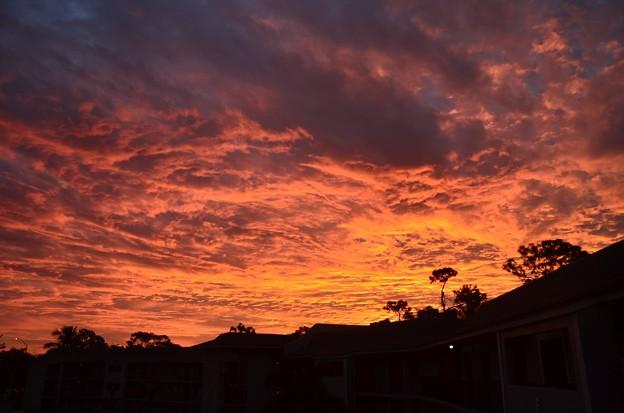 写真: Red Sky in the Morning 11-24-18