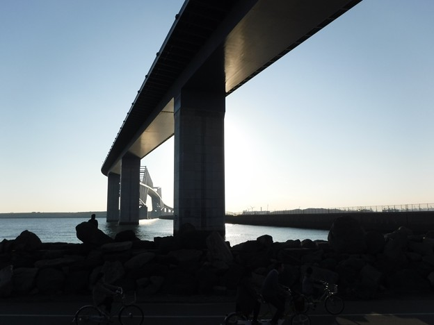 橋の下 2019-1-13
