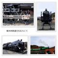 Photos: デゴイチとぽっぽ2019-1-12