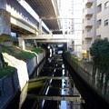 Photos: 古川 2019-1-14