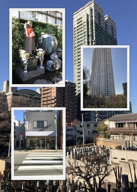 お墓参り 2019-1-18