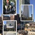 Photos: お墓参り 2019-1-18