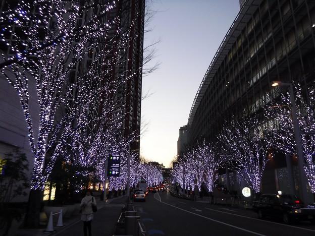 けやき坂…午後五時 2019-1-21