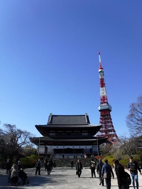 増上寺 2019-1-24