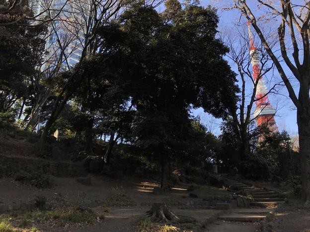 古墳とタワー 2019-1-24