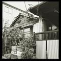 Photos: 暮らし 2019-1-24