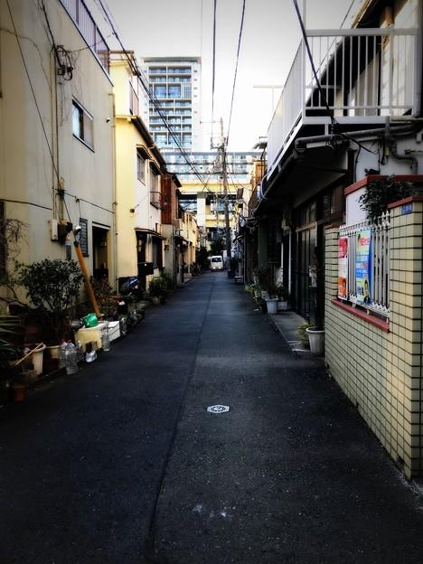 小山町 2019-1-24