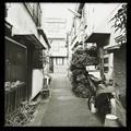 Photos: 小山町の路地2 2019-1-24