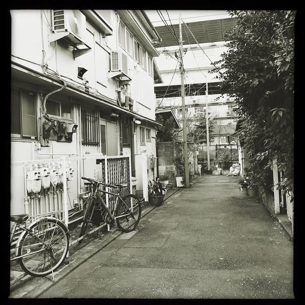 行き止まりは古川 2019-1-24