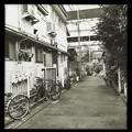 Photos: 行き止まりは古川 2019-1-24