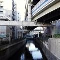 二ノ橋から小山橋 2019-1-24